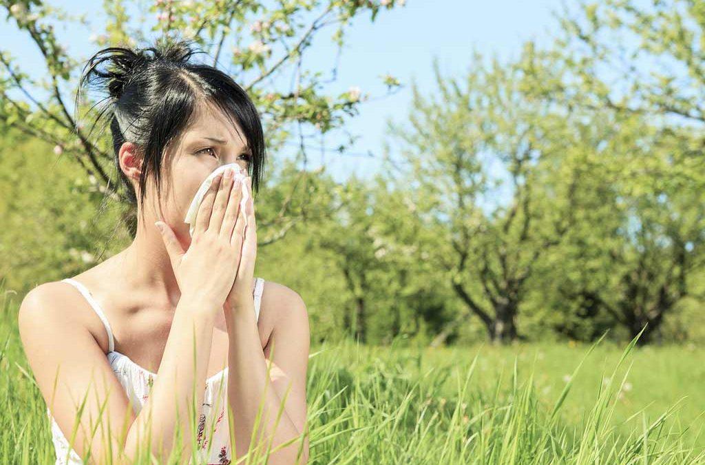 Les Allergies… Atchoum !!!